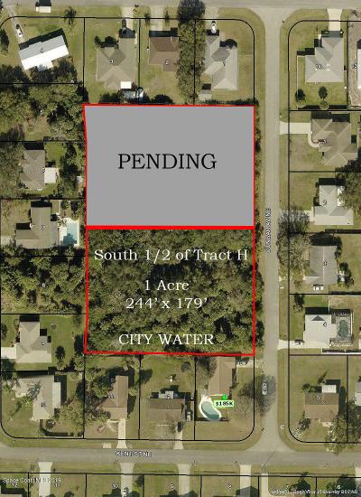 Palm Bay Residential Lots & Land For Sale: 456 Dunbar Avenue NE #SOUTH 1/