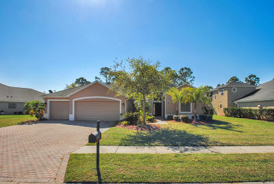 Brevard County Single Family Home For Sale: 288 Brandy Creek Circle SE