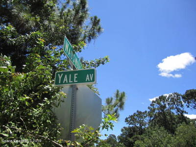 Palm Bay Residential Lots & Land For Sale: 1156 Yale Avenue SE
