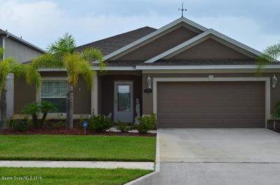 Palm Bay Single Family Home For Sale: 2396 Snapdragon Drive NW
