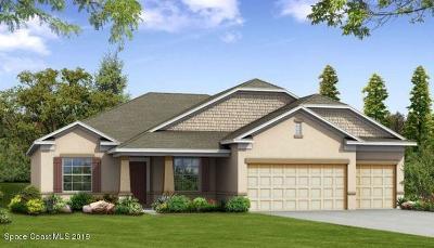 Merritt Island Single Family Home For Sale: 5045 Hebron Drive