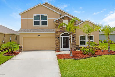 Palm Bay Single Family Home For Sale: 2342 Snapdragon Drive NW