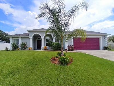 Palm Bay Single Family Home For Sale: 298 Albright Street SE