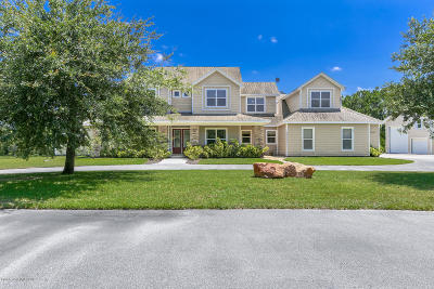 Brevard County Single Family Home For Sale: 5443 The Willows Drive
