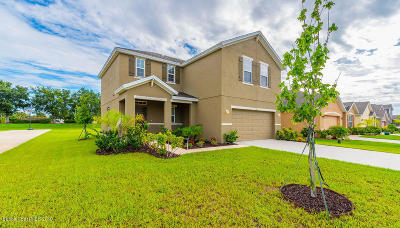 Palm Bay Single Family Home For Sale: 128 Alamere Drive SW