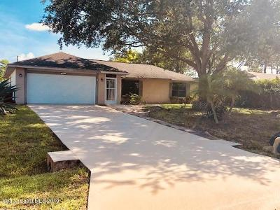 Palm Bay Single Family Home For Sale: 307 Ainsley Street SE
