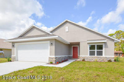 Palm Bay Single Family Home For Sale: 1317 Towton Street SE