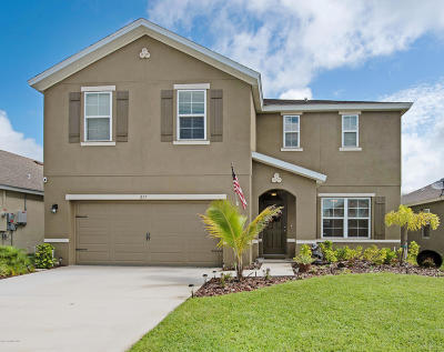 Palm Bay Single Family Home For Sale: 217 Moray Drive SW