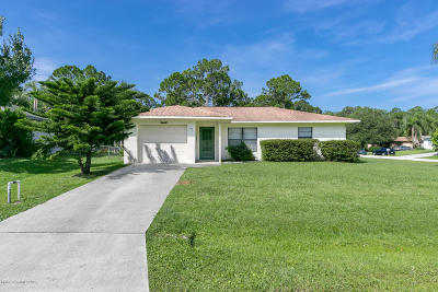 Palm Bay Single Family Home For Sale: 1642 Tharp Road SE