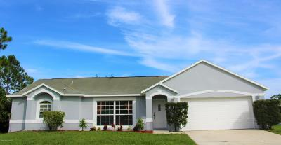 Palm Bay Single Family Home For Sale: 3185 Tilden Road SE