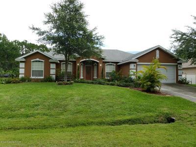 Palm Bay Single Family Home For Sale: 115 Lamar Street SW
