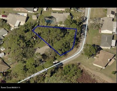 Brevard County Residential Lots & Land For Sale: 811 Firestone Street NE