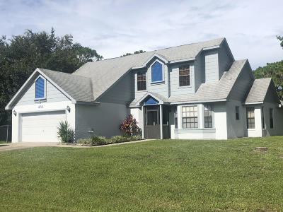 Palm Bay Single Family Home For Sale: 258 Awin Circle SE