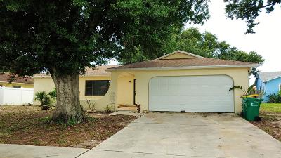 Merritt Island Single Family Home For Sale: 1635 Amberjack Court