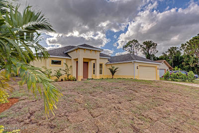 Palm Bay Single Family Home For Sale: 2387 SE Emerson Drive SE