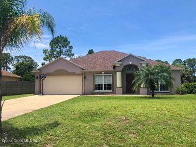 Palm Bay Single Family Home For Sale: 169 Abello Road SE