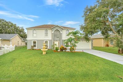 Palm Bay Single Family Home For Sale: 519 Davidson Street SE