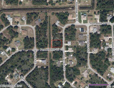 Residential Lots & Land For Sale: 2260 Ravel Road SE