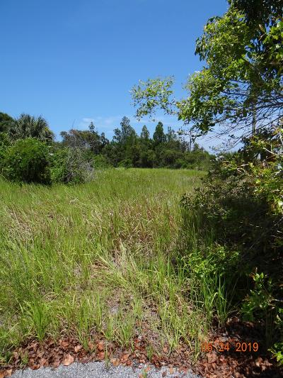 Residential Lots & Land For Sale: 3rd Avenue