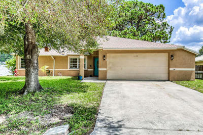 Palm Bay Single Family Home For Sale: 1239 Hegira Street NW