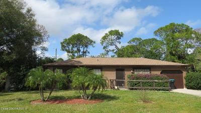 Palm Bay Single Family Home For Sale: 957 Stage Street SE