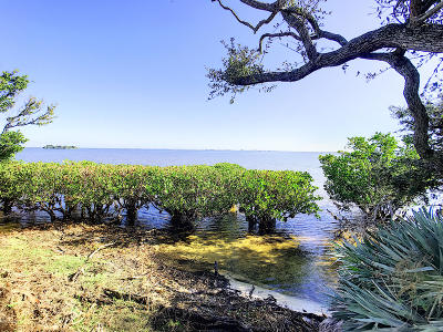 Merritt Island Residential Lots & Land For Sale: 5205 S Tropical Trail S