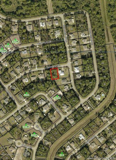 Palm Bay Residential Lots & Land For Sale: 1284 Devon Street SE