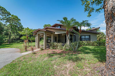 Brevard County Single Family Home For Sale: 450 Little League Lane