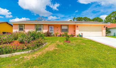 Palm Bay Single Family Home For Sale: 1390 Camas Avenue NW