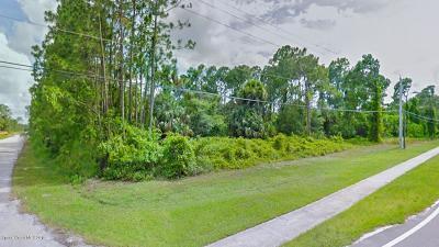 Palm Bay Residential Lots & Land For Sale: 2900 Jupiter Boulevard SE