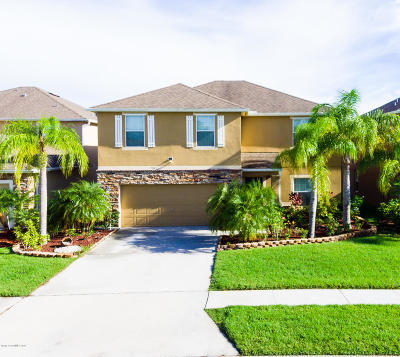 Palm Bay Single Family Home For Sale: 2655 Snapdragon Drive NW