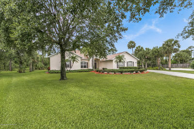 Palm Bay Single Family Home For Sale: 101 Dellwood Court SE