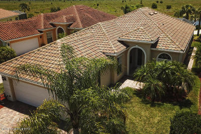 Palm Bay Single Family Home For Sale: 3572 Plume Way SE