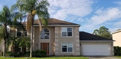 Palm Bay Single Family Home For Sale: 1595 La Maderia Drive SW
