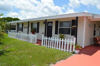 Palm Bay Single Family Home For Sale: 868 Badger Drive NE