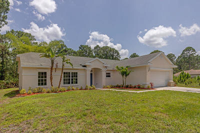 Palm Bay Single Family Home For Sale: 1659 Hayworth Circle NW