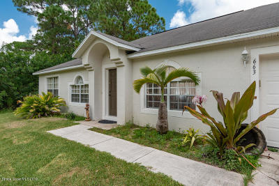 Palm Bay Single Family Home For Sale: 663 Jaffee Avenue SE