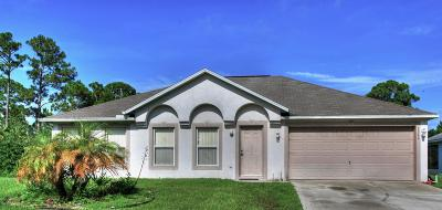 Palm Bay Single Family Home For Sale: 3240 San Miguel Avenue SE