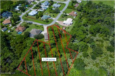 Melbourne Residential Lots & Land For Sale: 2890 Pine Branch Drive