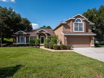 Clermont, Kissimmee, Orlando, Windermere, Winter Garden, Davenport Single Family Home For Sale: 8711 Spyglass