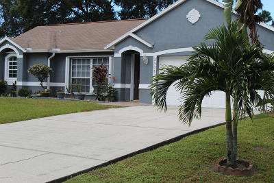 Palm Bay Single Family Home For Sale: 2509 Palisades Drive SE