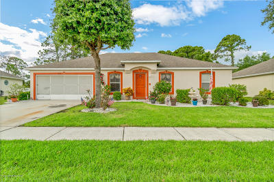 Palm Bay Single Family Home For Sale: 1648 Las Palmos Drive SW