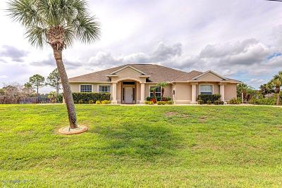 Grant Valkaria Single Family Home For Sale: 5872 Goldrush Avenue