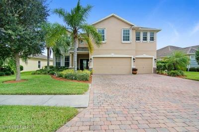 Palm Bay Single Family Home For Sale: 304 Broyles Drive SE