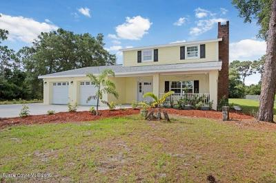 Palm Bay Single Family Home For Sale: 1942 Biddle Street NE