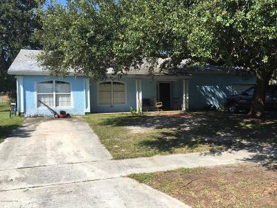 Palm Bay Single Family Home For Sale: 1449 Voyager Street NE
