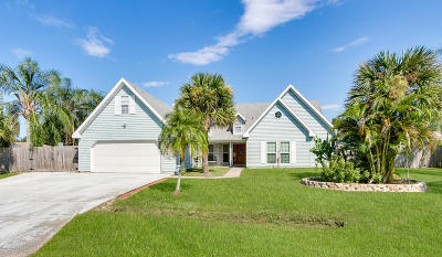 Palm Bay Single Family Home For Sale: 731 Hurole Avenue NE