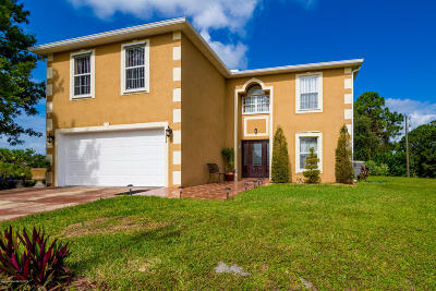 Palm Bay Single Family Home For Sale: 1393 Rabbit Street SE