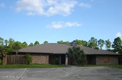 Brevard County Single Family Home For Sale: 1596 Farnsworth Avenue