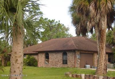 Grant Valkaria Single Family Home For Sale: 1590 Farnsworth Avenue